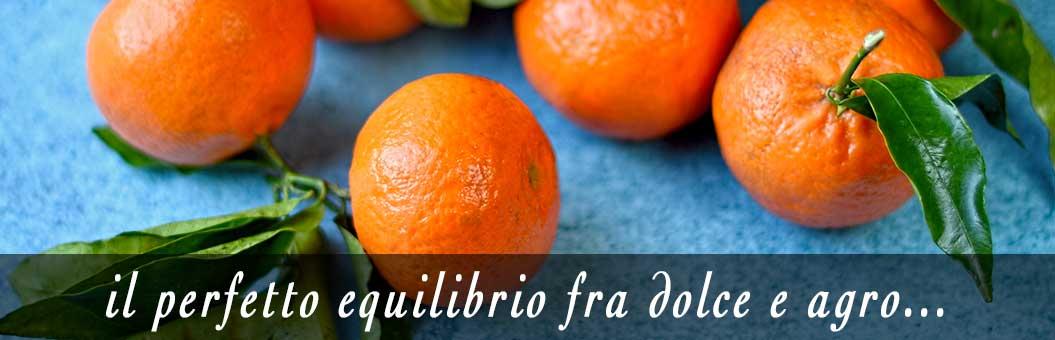 clementine di sicilia