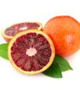 vendita arancia sanguinello