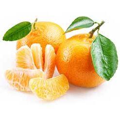 acquisto mandarini